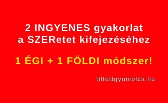 2 INGYENES gyakorlat a SZERetet kifejezéséhez ♥ 1 ÉGI + 1 FÖLDI módszer! Tiltott gyümölcs